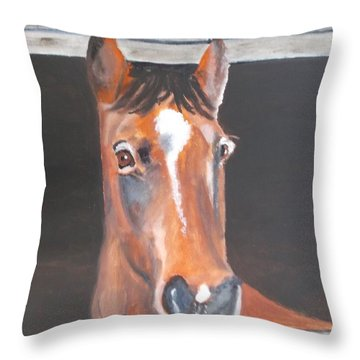 A Horse With No Name Throw Pillow by Carole Robins