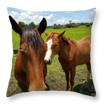 A Horse's Touch Throw Pillow