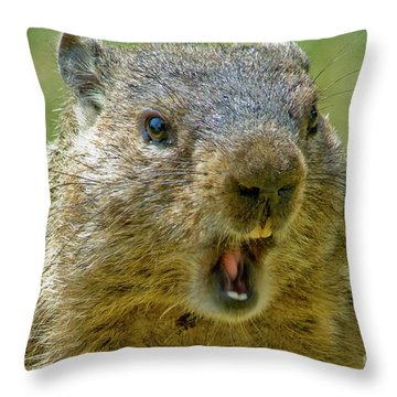 A Hungry Fellow  Throw Pillow