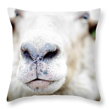 A Kiss Throw Pillow by Swift Family