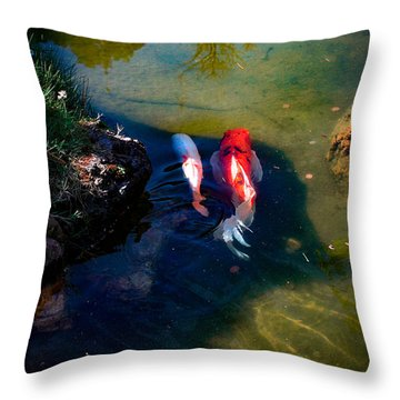 A Koi Romance Throw Pillow
