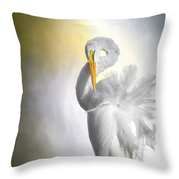 A Lady Needs Her Privacy Throw Pillow