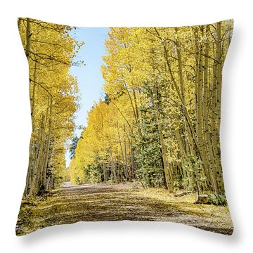 A Lane Of Gold Throw Pillow