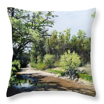 A Last Drink Throw Pillow