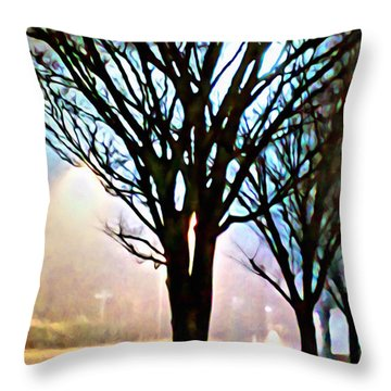 A Light Dusting Of Solitude Throw Pillow