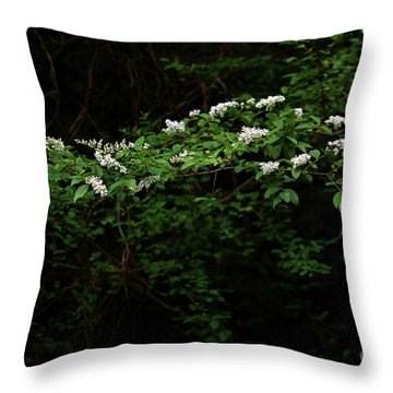 Throw Pillow featuring the photograph A Light In The Darkness by Skip Willits