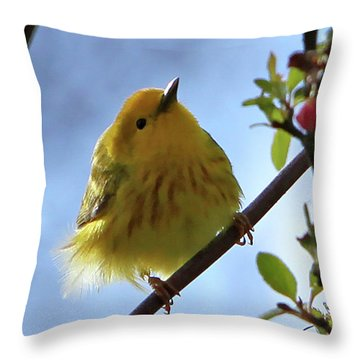 A Liitle Yellow Puff Ball Throw Pillow by Marle Nopardi