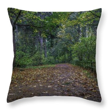 A Lincoln Park Autumn Throw Pillow