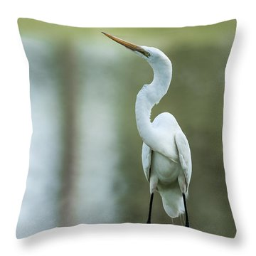 A Little Attitude Throw Pillow