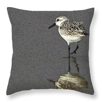 A Little Bird On A Beach Throw Pillow