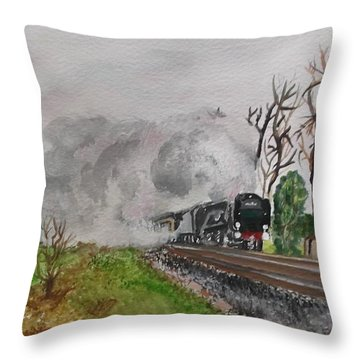A Little Bit Country A Little Bit R And R Throw Pillow by Carole Robins