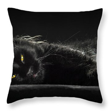 A Little Bit Tired Throw Pillow
