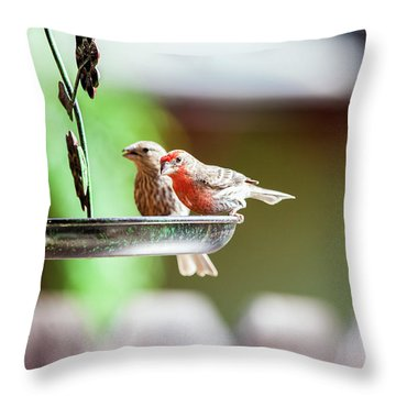 A Little Lunch Throw Pillow by Wade Courtney