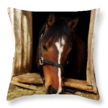 A Little Nibble Throw Pillow by Linda Mishler