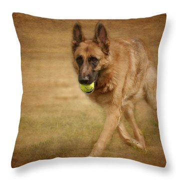 Throw Pillow featuring the photograph A Little Playtime - German Shepherd Dog by Angie Tirado