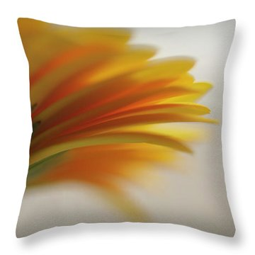 A Little Ray... Throw Pillow