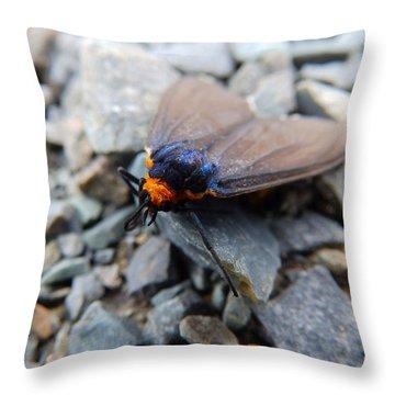 A Little Rest Throw Pillow
