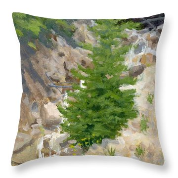 A Little Runoff Throw Pillow