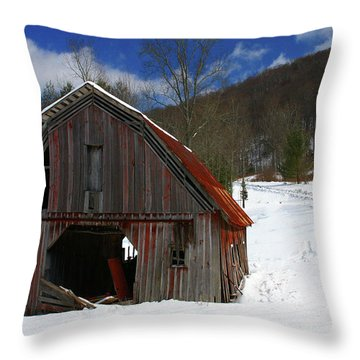 A Little Rust Throw Pillow by Dale R Carlson