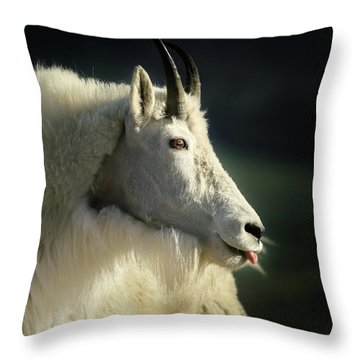 A Little Slip Of The Tongue Throw Pillow