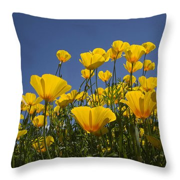 A Little Sunshine  Throw Pillow
