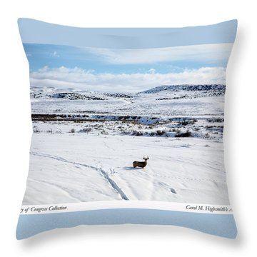 A Lone Buck Deer In Carbon County, Wyoming Throw Pillow by Carol M Highsmith