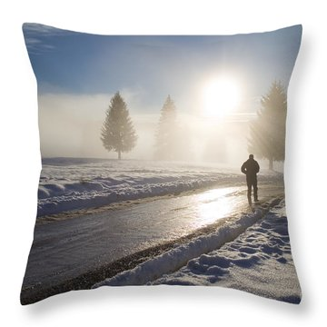 A Lonely Winter Throw Pillow by Gabriela Insuratelu