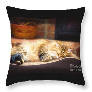 A Long Winter's Nap Throw Pillow