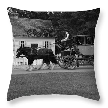 A Look Back Throw Pillow by Eric Liller