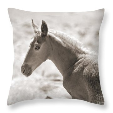 A Look Back Throw Pillow