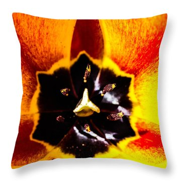 A Look Inside A Tulip  Throw Pillow
