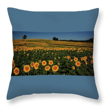 Throw Pillow featuring the photograph A Lot Of Birdseed  by Chris Berry