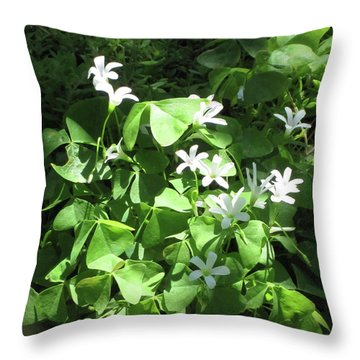 Throw Pillow featuring the photograph A Lovely Spot For Shamrocks by Nancy Lee Moran