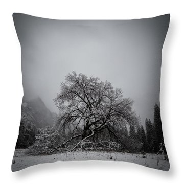 A Magic Tree Throw Pillow