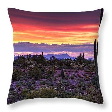 A Magical Desert Morning  Throw Pillow