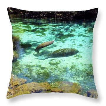 A Manatee Calf And Cow  Throw Pillow
