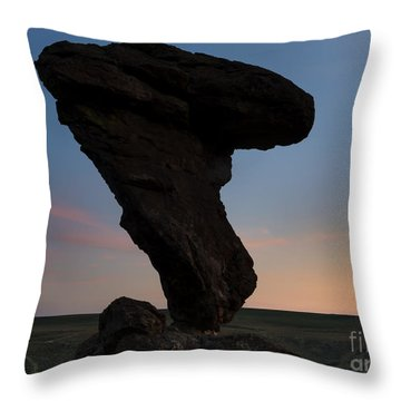 A Matter Of Balance Throw Pillow