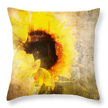 A Memory Of Summer Throw Pillow