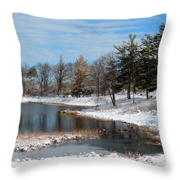 A Mild Winter Morning Throw Pillow by Teresa Schomig