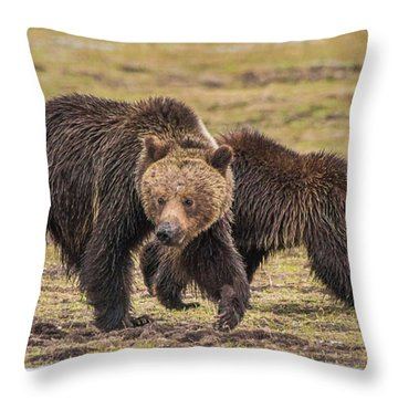 A Mini-mom And Yearling Throw Pillow
