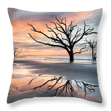 A Moment Of Reflection - Charleston's Botany Bay Boneyard Beach Throw Pillow