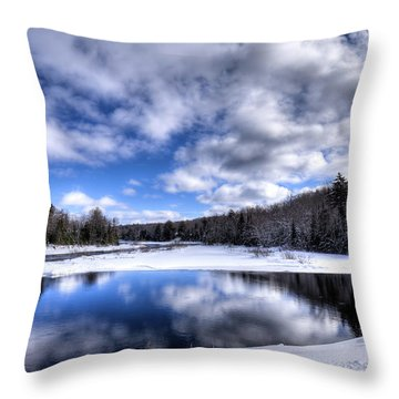 Throw Pillow featuring the photograph A Moose River Snowscape by David Patterson