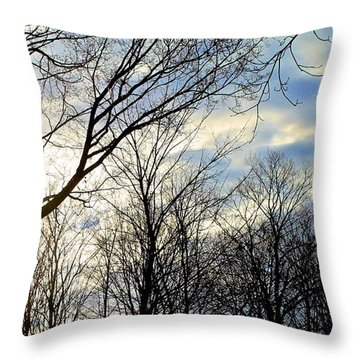 A Morning Sun Throw Pillow