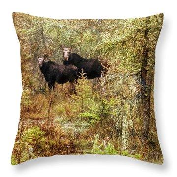 A Mother And Calf Moose. Throw Pillow