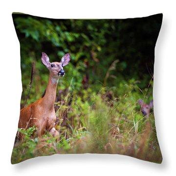 A Mother's Vigilance Throw Pillow