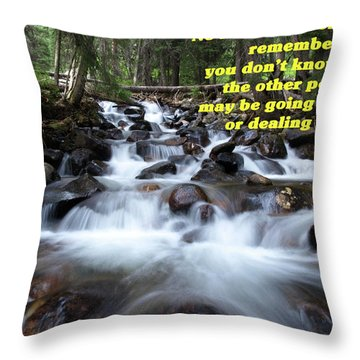 A Mountain Stream Situation 2 Throw Pillow by DeeLon Merritt