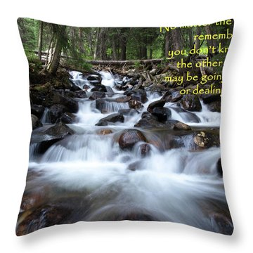 A Mountain Stream Situation Throw Pillow by DeeLon Merritt