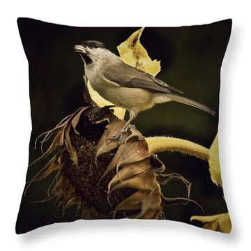 A Mouthful Throw Pillow