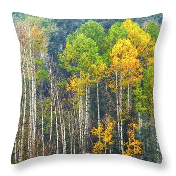 A Muted Fall Throw Pillow