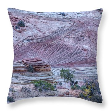 Throw Pillow featuring the photograph A Natural Abstract by John M Bailey